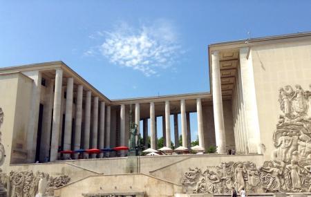 Museum Of Modern Art City Of Paris Image