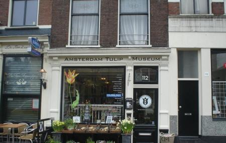 Amsterdam Tulip Museum Image