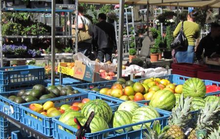 Boerenmarkt Op De Noordermarkt Image