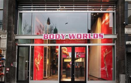 Body Worlds Image