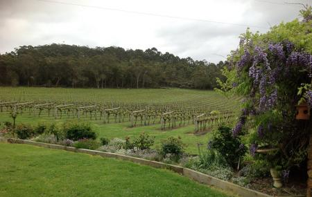 Duckett's Mill Winery Image