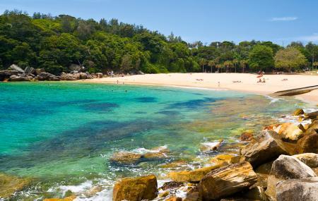 Shelly Beach Image