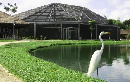 Parque Mangal Das Garcas Image