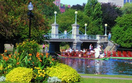Boston Public Garden Image