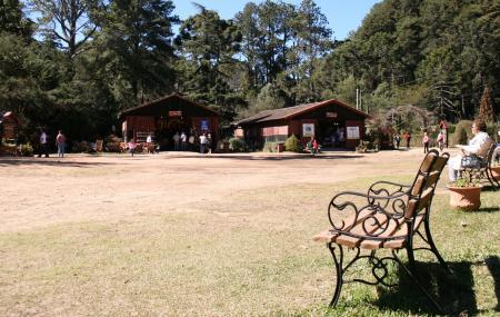 Horto Florestal Image