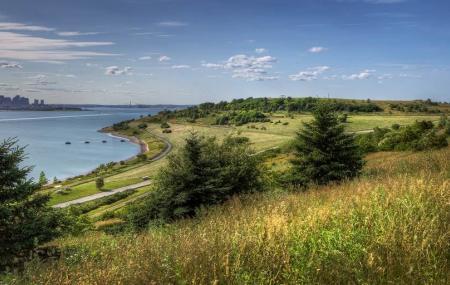 Spectacle Island Image