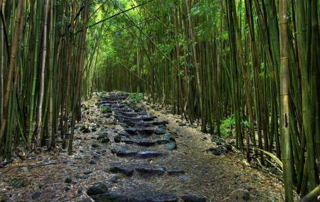 Pipiwai Trail, Haleakala National Park