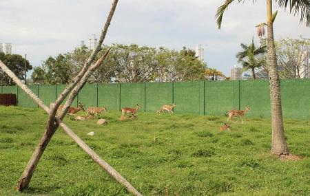 Complexo Ambiental Cyro Gevaerd Zoologico Image