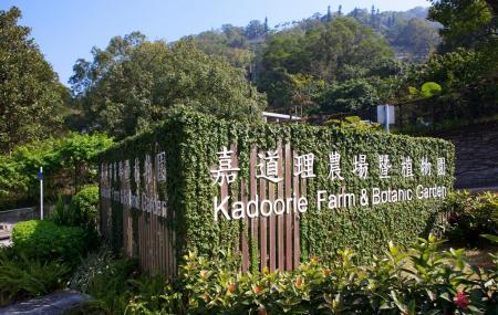 Hotels Near Happy Valley Hong Kong