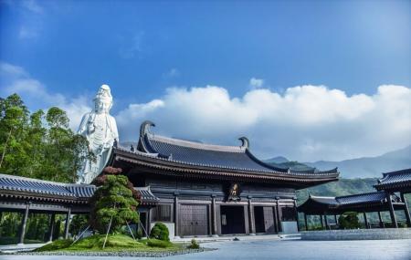 Tsz Shan Monastery Image