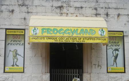 Froggyland Museum Image