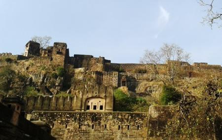 Ranthambore Fort Image
