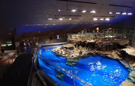 Sumida Aquarium Image