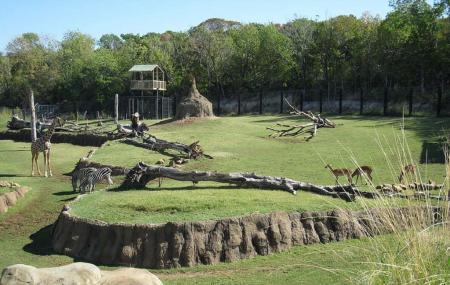 Dubai Zoo Image