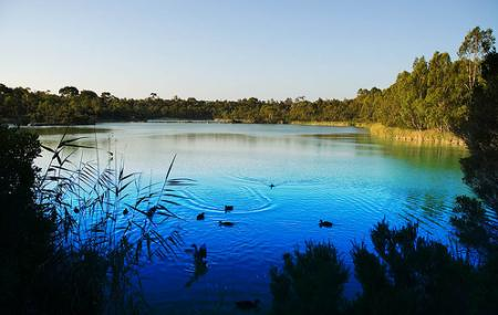 Newport Lakes Reserve Image