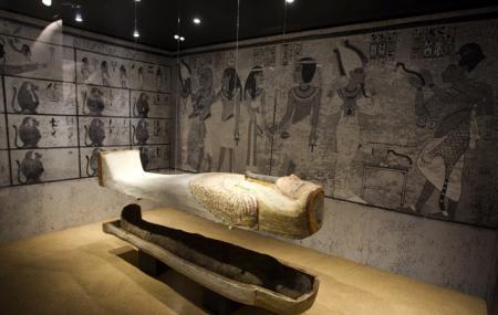 Barcelona Egyptian Museum Image