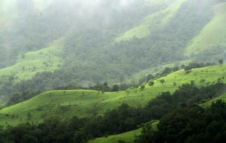 Gangamoola Hill Image