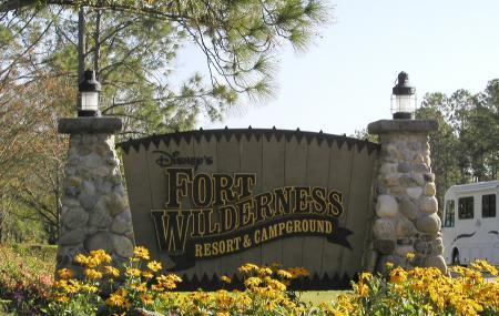 Camp Disney Image