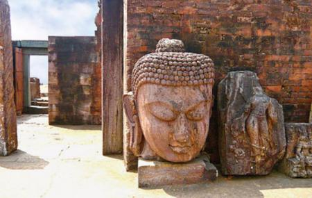 Ratnagiri Buddhist Excavations Image