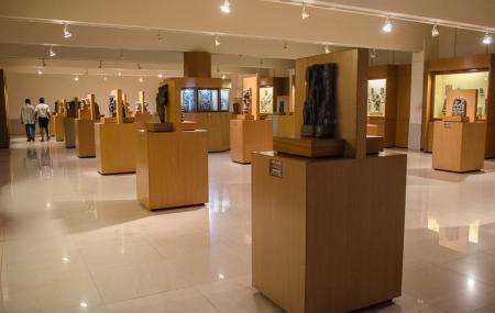 Odisha State Museum Image