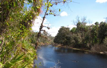 Econlockhatchee River Image
