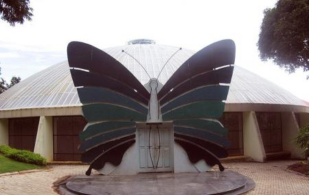 Butterfly Park Image