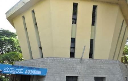 Bangalore Aquarium Image