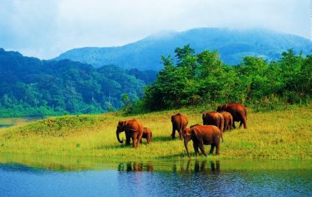 Elephant Lake Image