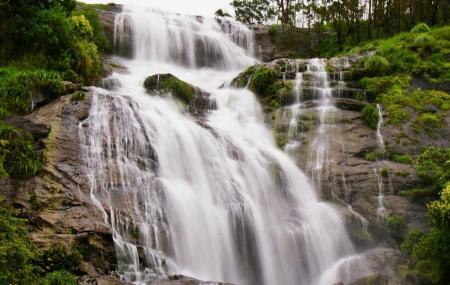 Chinnakanal Waterfalls Image