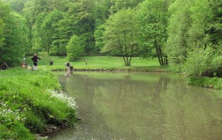 Bratislava Forest Park Image