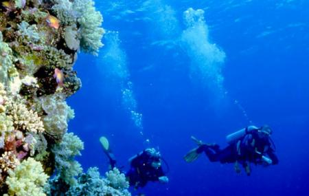 Scuba Diving At Bunaken Image