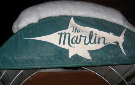 Marlin Image
