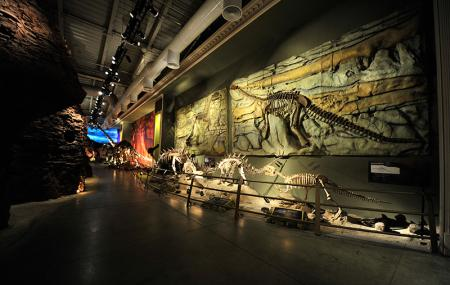 Jurassic Land Image