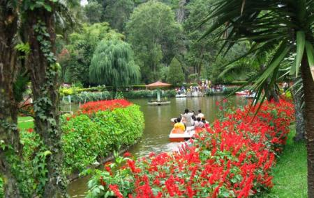 Sim's Park Image