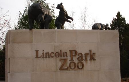 Lincoln Park Zoo Image