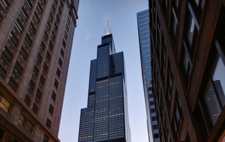 Willis Tower Image