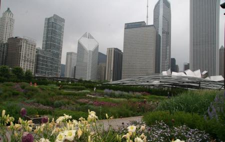Lurie Garden Image