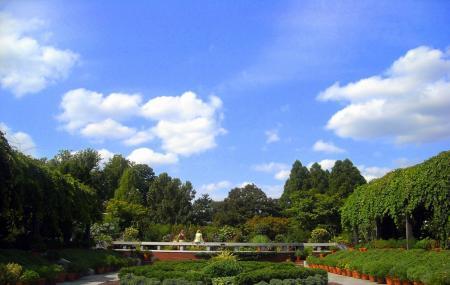 United States National Arboretum Image