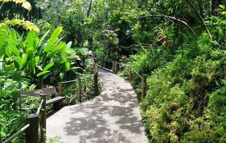 Hilo Tropical Gardens Image