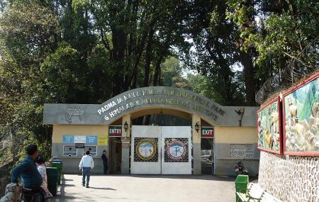 Padmaja Naidu Himalayan Zoological Park Image