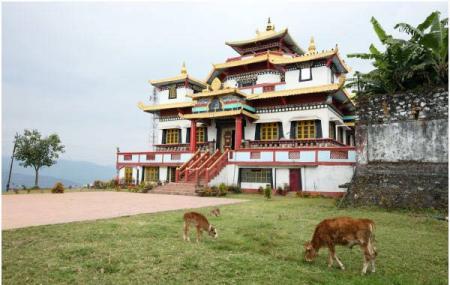 Zang Dhok Palri Monastery Image