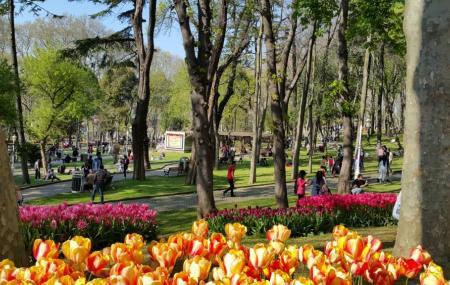 Gulhane Park Image