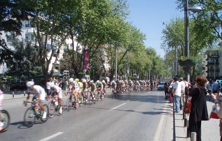 Bagdat Street Image