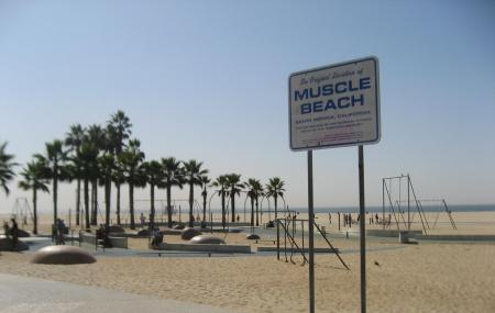 Muscle Beach Image