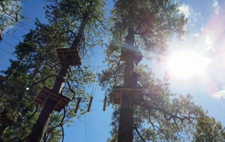 Flagstaff Extreme Adventure Course Image