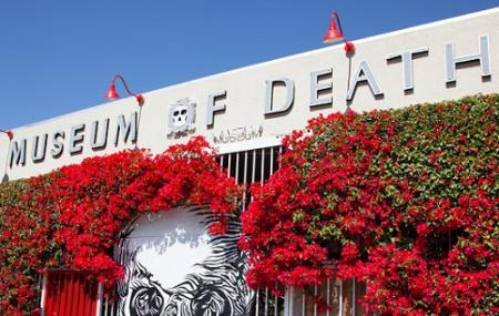 Museum Of Death Image