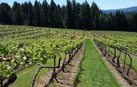 Lavelle Vineyards Image