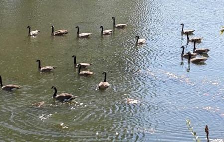 Delta Ponds City Park Image