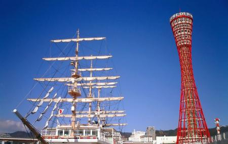 Kobe Port Tower Image