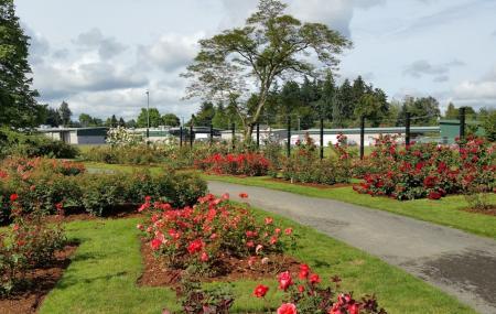 Owen Rose Garden Image